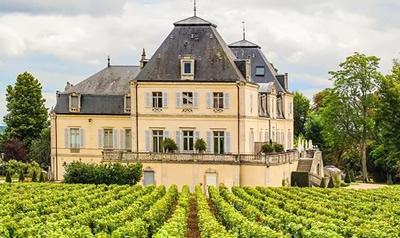 Meursault wijn