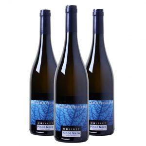 Wijnpakket Molinet Pinot Nero Organic (3 flessen)