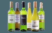 Best Buy Wit Wijnpakket