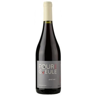 Clos des Fous Pour Ma Gueule, Pinot Noir, Maipo Valley, Chili, Rode wijn