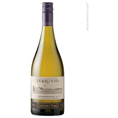 Concha y Toro Terrunyo Sauvignon Blanc, 2017, Chili, Witte wijn
