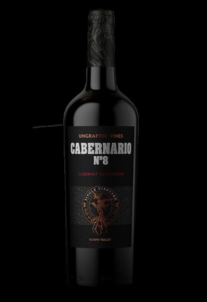 Santa Rita Cabernario N°8, 2017, Maipo Valley, Chili, Rode wijn