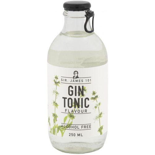 HEMA Alcoholvrije Gin Tonic 250 Ml
